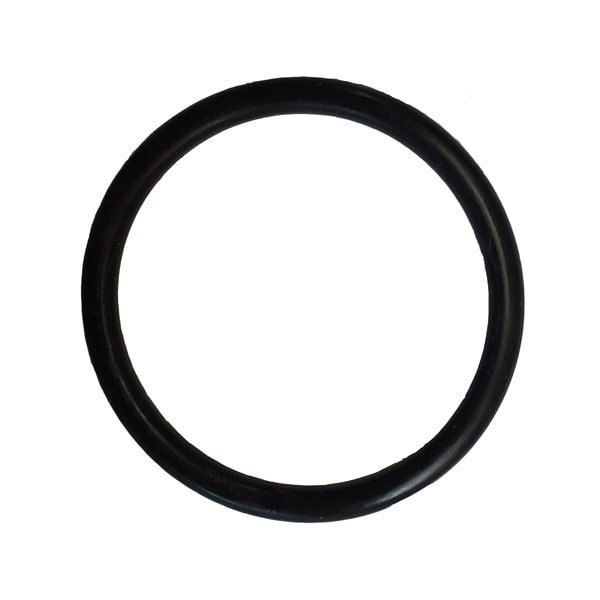 The Pond Guy AllClear Plus G1 Quartz Sleeve O-Ring
