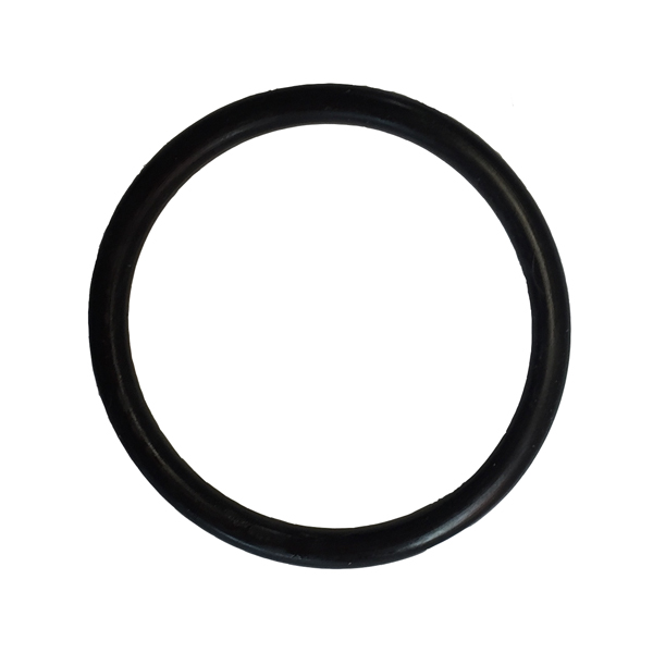 The Pond Guy® AllClear™ Plus G1 Quartz Sleeve O-Ring