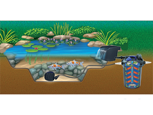 The Pond Guy AllClear Ecosystem Pond Kit