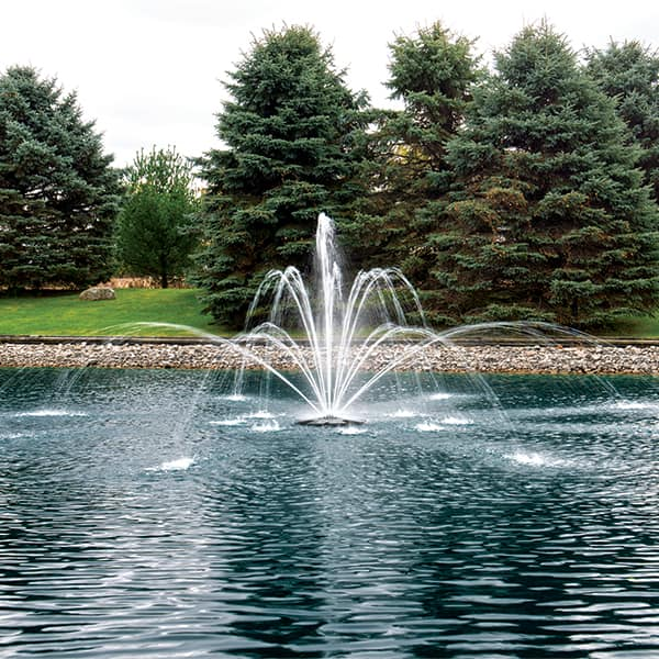 The Pond Guy AquaStream Premium Double Arch & Geyser Fountain Nozzle 1/2 HP