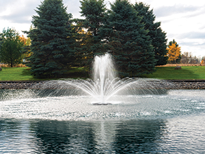 The Pond Guy(r) AquaStream(tm) Fountain - Crown and Rocket Spray Pattern