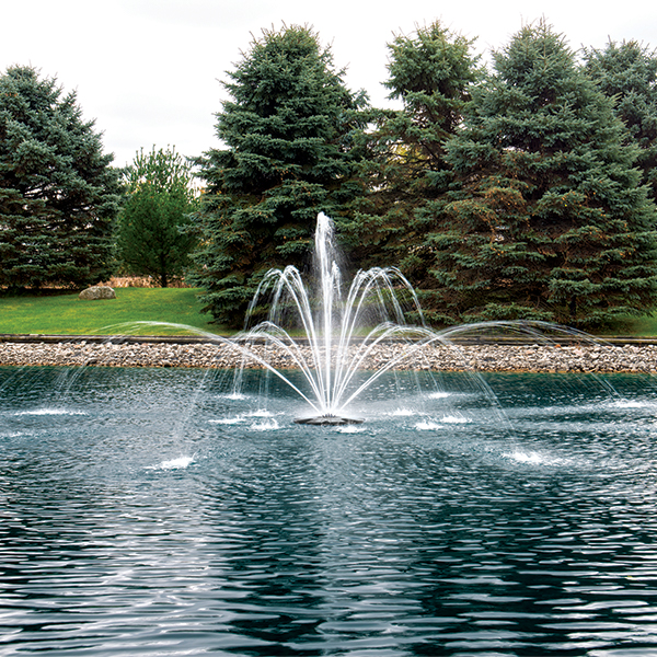 The Pond Guy® AquaStream™ Double Arch & Geyser Nozzle