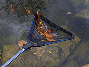 Collapsible Skimmer Net