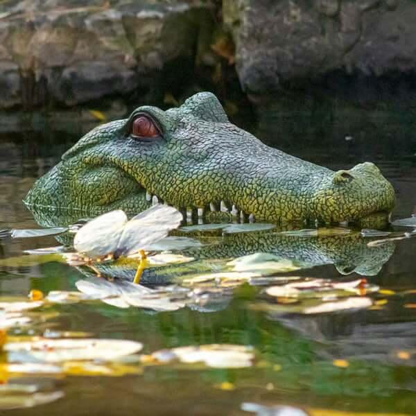 The Pond Guy® GatorDefender™