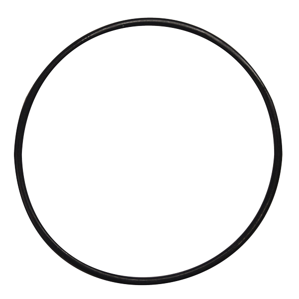 The Pond Guy® O-Ring for UV Transformer