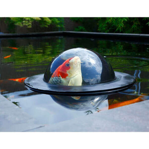 Floating Pond Bubble