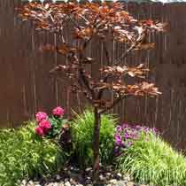 Copper Extra Tall Maple Tree Fountain Kit