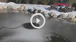 Water Garden Pond De-Icer Video