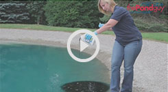 Pond Logic® Pond Dye - Quarts Video