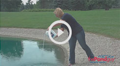 Pond Logic(r) PondClear(tm) Beneficial Bacteria Video