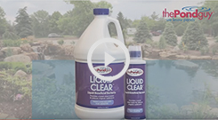 The Pond Guy(r) LiquidClear(tm) Bacterial Pond Cleaner Video