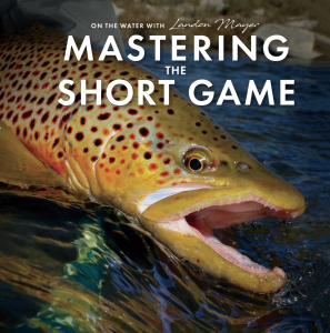 Mastering The Short Game