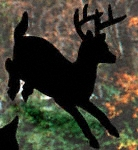 Running Deer Shadow Wood Pattern