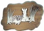 Zebra Project Pattern