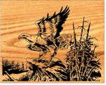 Eagle Landing Scrolled Art Project Pattern