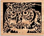 Owl Eyes Project Pattern