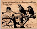 Desert Ravens Project Pattern
