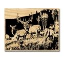 Elk Meadow Scrolled Art Project Pattern