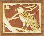 Eagle Project Pattern