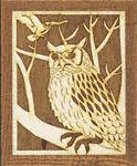 Owl Project Pattern