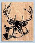 Deer Portrait Project Pattern