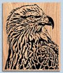 Eagle Portrait Project Pattern
