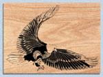 Eagle Strike Project Pattern