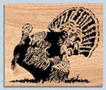 Turkey Project Pattern