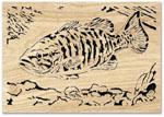 Smallmouth Bass Scroll Art Project Pattern