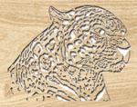 Leopard Project Pattern