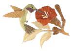 Hummingbird Trumpet Flower Intarsia Project Pattern