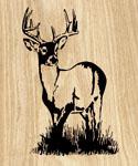 10 Point Buck Project Pattern