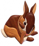 Baby Cottontail Rabbit Intarsia Project Pattern