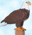 3D Life Size Eagle Project Pattern