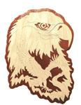 Bald Eagle - Nature's Majesty Project Pattern