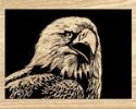 Eagle Scroll Saw Pattern