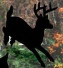 Running Deer Shadow Wood Pattern