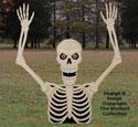 Motorized Rising Skeleton Plans