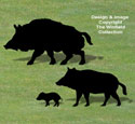 Wild Boar Family Shadow Pattern