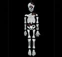 Mr Brittle Bones Woodcraft Pattern