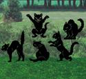 Frightened Feline Shadow Patterns