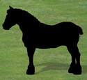 Clydesdale Shadow Woodcrafting Pattern