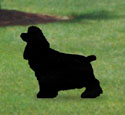 Cocker Spaniel Shadow Woodcraft Pattern