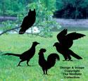 Four Birds Shadow Woodcraft Pattern