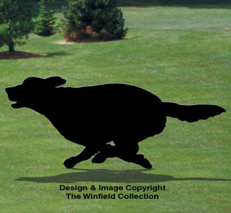 Running Golden Retriever Shadow Pattern