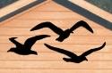 Seagull Shadows Woodcrafting Pattern