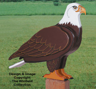 3D Life-Size Eagle Woodcraft Pattern