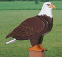 3D Life-Size Eagle Woodcraft Pattern