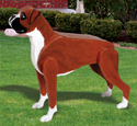 3D Life-Size Boxer Woodcraft Project Plan