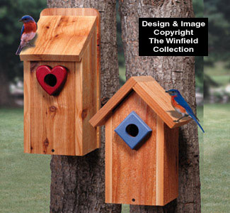 Birdhouse Wood Patterns Bluebird House Duo Wood Project Plan
